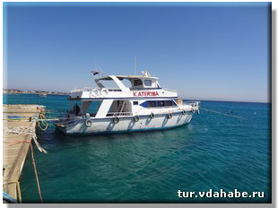 Logo Fishing for Sharm